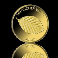 20 Euro Deutschland Buche 1/8 Oz Gold 2011